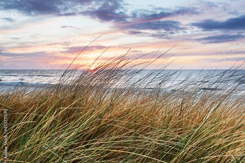 Fotografiet Beach grass on dune, Baltic sea at sunset