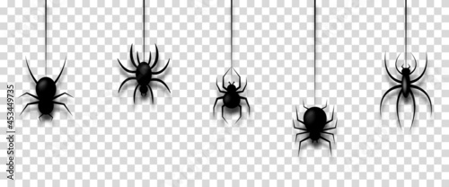 Fotografija Vector illustration with hanging spiders for decoration and covering on transparent background