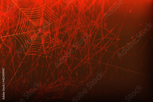 Fototapeta Dark vector background with spider web.
