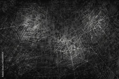 Fotografia, Obraz Dark vector background with spider web.