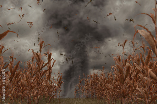 Foto 3d Rendering of withered cornfield in front of dramatic sky and tornado