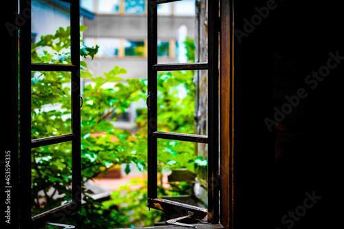 Fotografija 暗い部屋から見える新緑