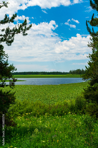 Canvas Print Indian Lake, Grand Teton National Park, Wyoming
