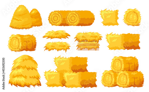 Canvastavla Set Icons Bale of Hay Different Shapes and Sizes Isolated on White Background