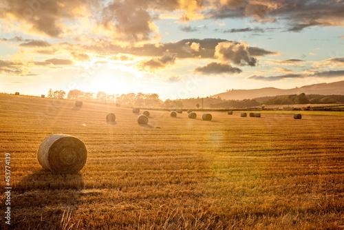Valokuvatapetti Hay bales in golden field with sunset summer background