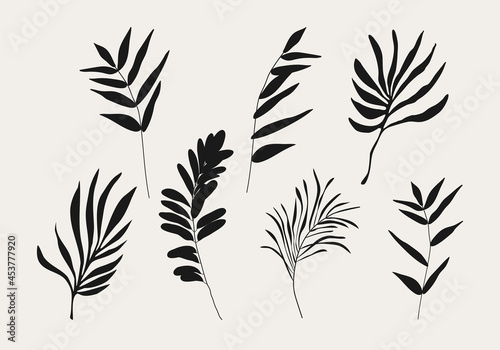 Tablou Canvas Minimalist botanical branch with leaves elements for abstract collage