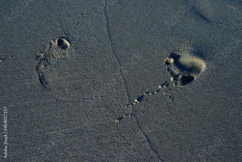Fotografie, Obraz 黄金に光る砂浜