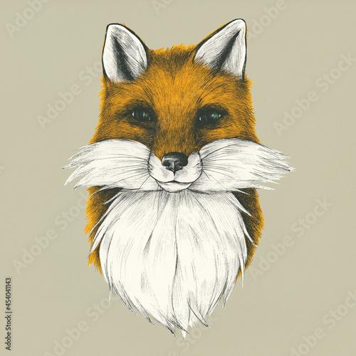 Fototapeta premium Hand drawn fox isolated on background