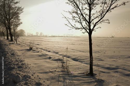 Zima, śnieg, pola