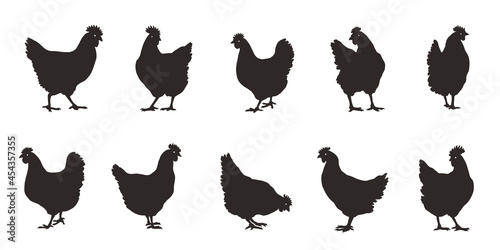Fotografie, Obraz various  chicken silhouettes on the white background