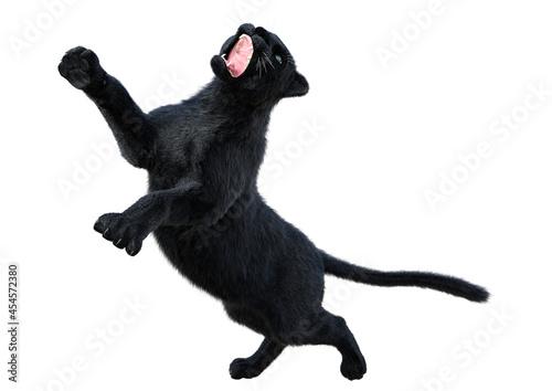 Obraz na plátně 3D Rendering Black Panther on White