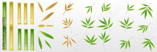 Slika na platnu Set of realistic 3D bamboo tree leaf and stem stick elements design for background decoration