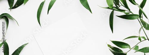 Fotografia Blank white card, green leaves on white background as botanical frame flatlay, w