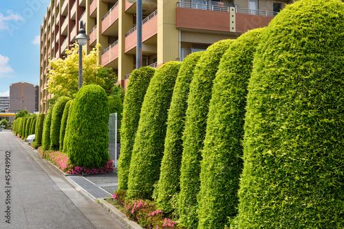 Fotografia 日本の住宅地 Japan's residential area.