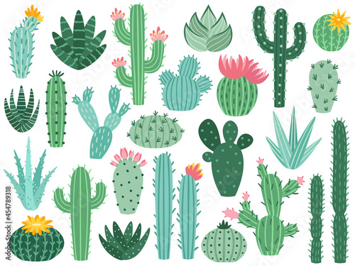 Canvastavla Mexican cactus and aloe