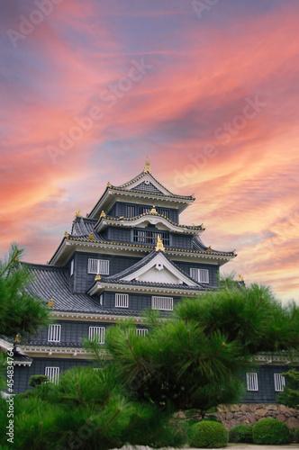 Fotomural 夕暮れの岡山城(烏城)