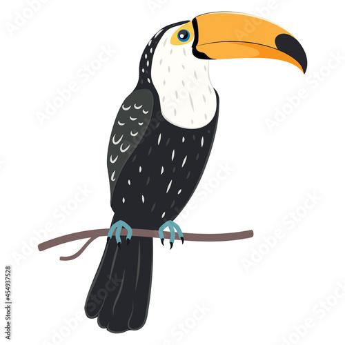 Fototapeta premium Toucan tropical bird
