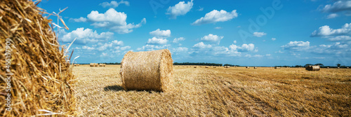 Wheat straw bales on agricultural field at autumn season. Fototapet