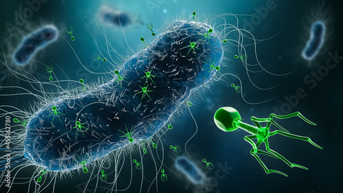 Fotografering Group of phages or bacteriophages infecting bacteria 3D rendering illustration