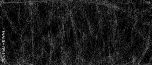 Fotografie, Obraz Realistic spider web background texture