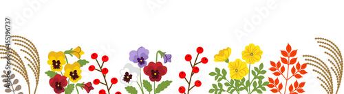 Valokuva Autumn flower and plants