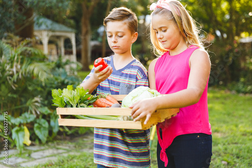Happy caucasian brother and sister standing in garden holding box of fresh organic vegetables