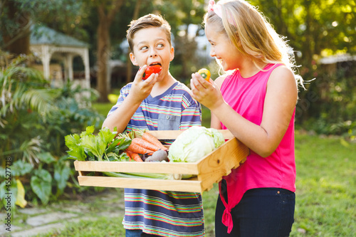 Happy caucasian brother and sister in garden with box of fresh organic vegetables pretending to eat