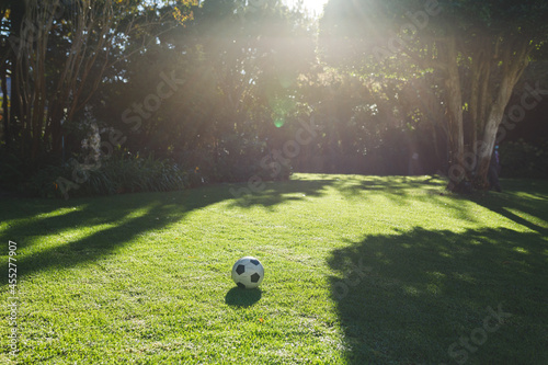 Football lying on grass in garden with trees on sunny day