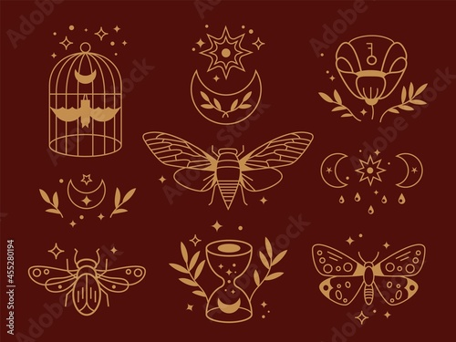 Magical outline collection Fototapet