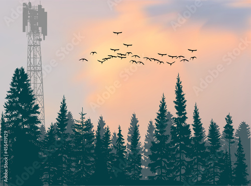 Foto antenna tower silhouette in green forest at orange sky