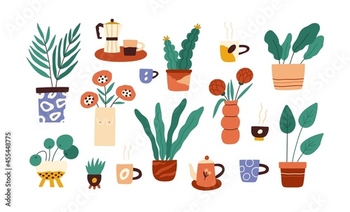 Photo Set of house plants in pots and flowers in vases