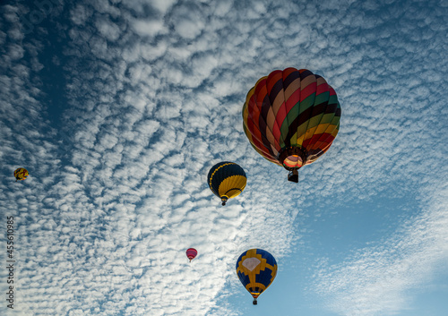 Fotografiet Hot air balloons taking flight