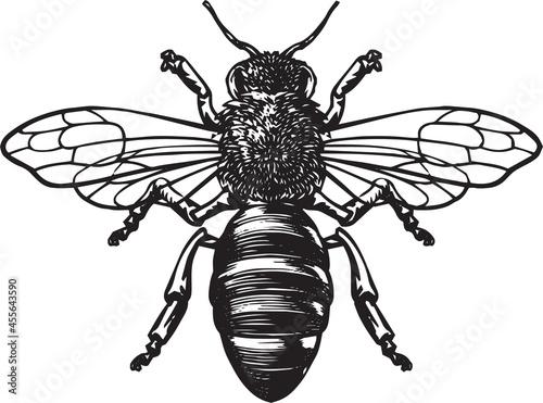 Tablou Canvas Print bee kind, be faithful, be greatful