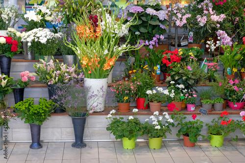 Valokuvatapetti Étal de fleuriste