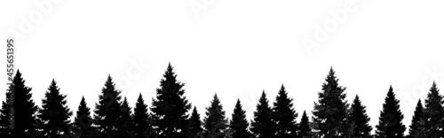 Fotografie, Obraz Winter forest banner , Christmas