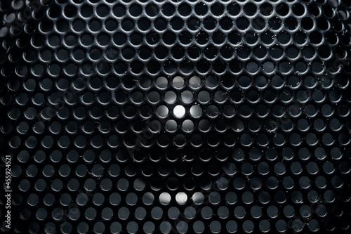 maskownica głośnika