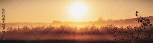 Fotografija Autumn landscape fog over the meadow in the rays of the dawn sun