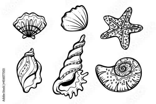 black and white seashells hand drawn set vector illustration isolated on a white Fototapet
