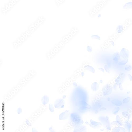 Murais de parede Light blue flower petals falling down. Divine roma