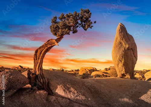 Fotografie, Obraz desert, utah, rock, landscape, arch, nature, usa, sky, monument, sandstone, ariz