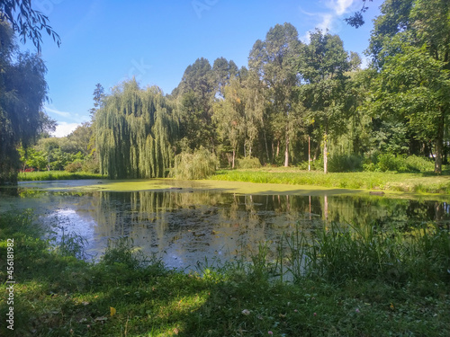 Fotografiet Autumn landscape in the park and the embankment of the pond and lake