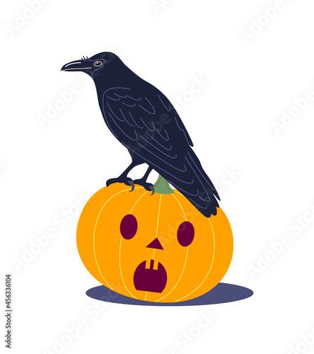 Fototapeta premium Black Crow Sitting on Halloween Pumpkin
