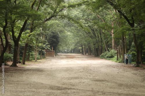 Fotografering 下鴨神社