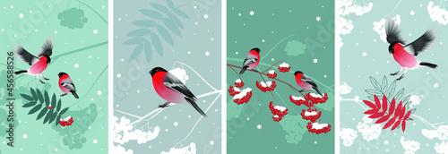Winter wall art vector set Fototapet