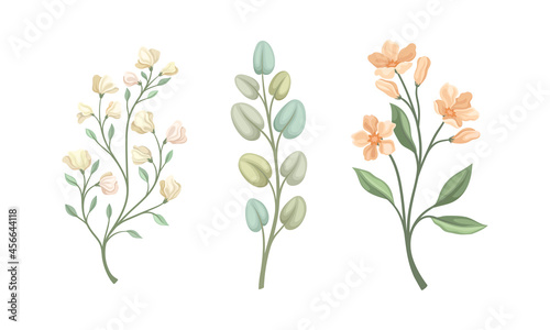 Fotografie, Obraz Twig and Foliage with Stem, Leaves and Blooming Flower Vector Set