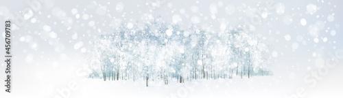 Fotografie, Obraz Vector  snowy, winter wonderland scene with forest