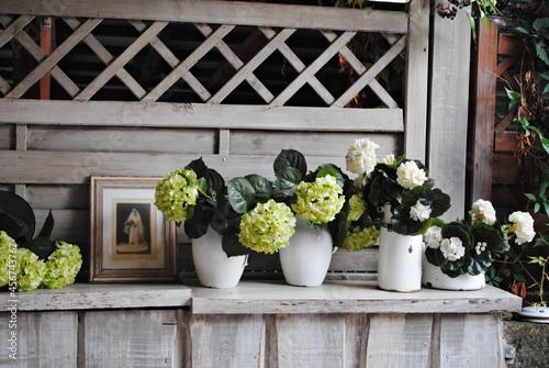 Kwiaty na tarasie