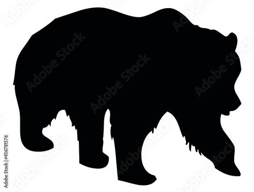 Canvastavla Bear, wild animal living in forest, wildlife, beast, predator, carnivore, mammal