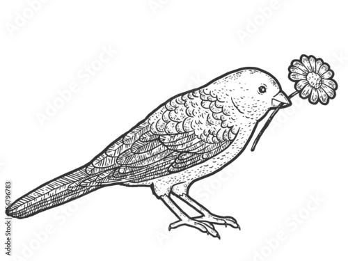 Photo Bird holds in its beak a flower