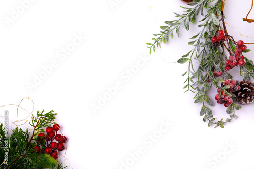 Composition of tree branches with pine cones and copy space on white background